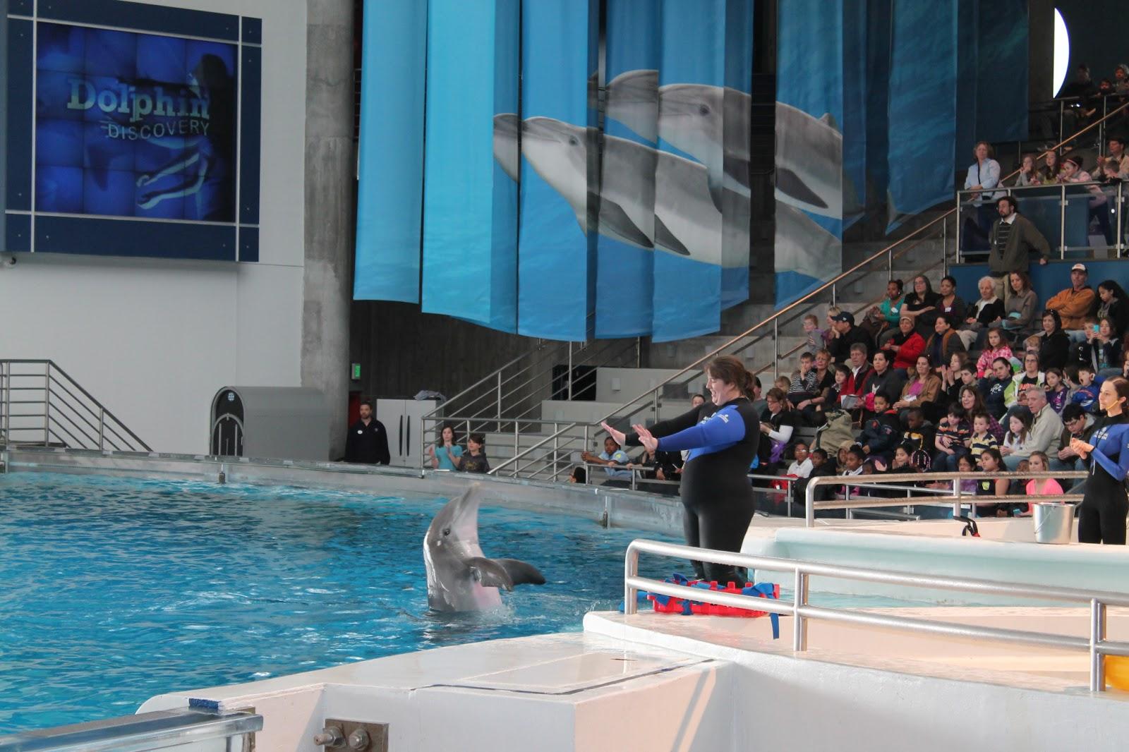 National Aquarium In Baltimore Md