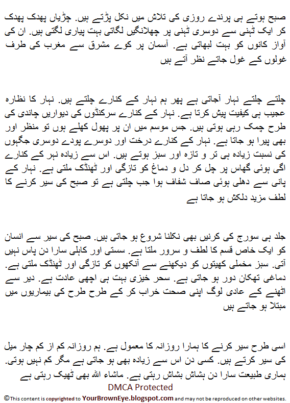 Subah ki sair essay in urdu