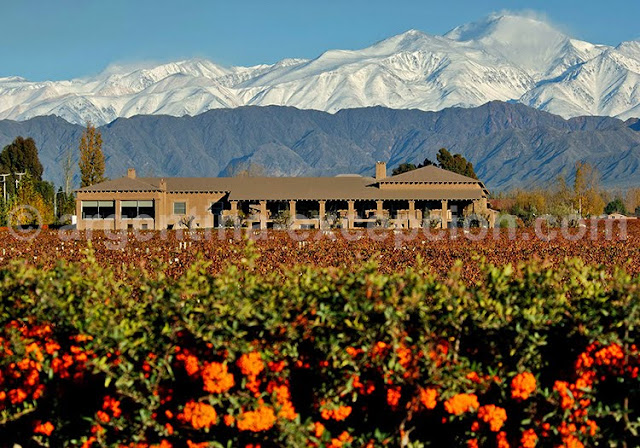 best places to visit in argentina mendoza