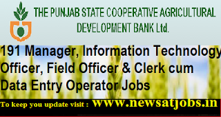 punjab-co-bank-Manager-jobs