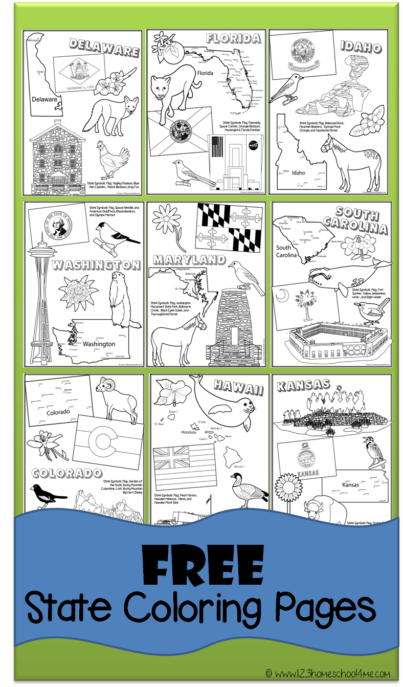 free state coloring pages to help kids learn about all 50 united states 2c perfect for preschool 2c prek 2c toddler 2c kindergarten 2c first grade 2c second