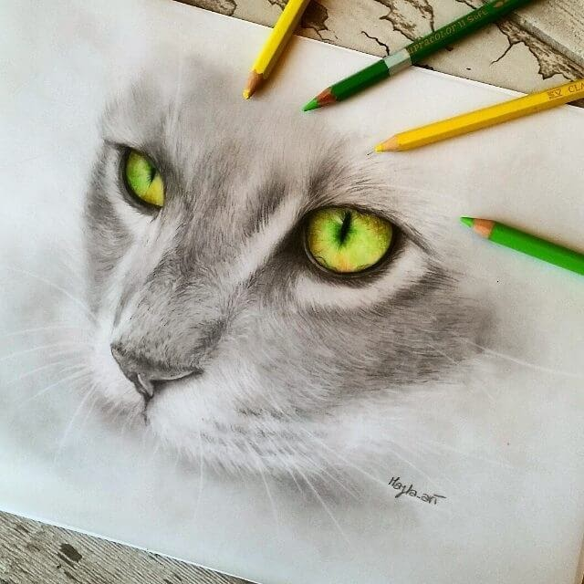08-Cat-s-Eyes-Majla-Colorful-Precise-and-Realistic-Animal-Drawings-www-designstack-co