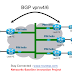 Introduction to Multicast over VPN or mVPN