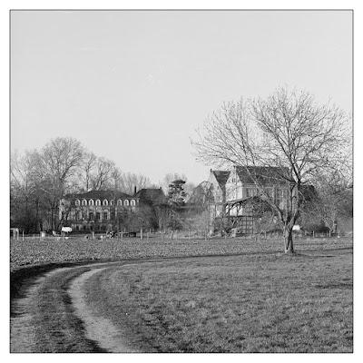 Blick zur Mühle in Göbitz.