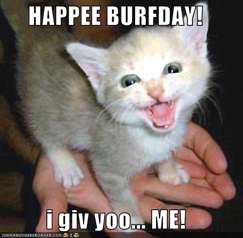 happy birthday animal funny - photo #7