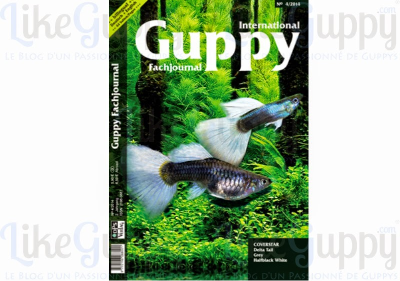 International-Guppy-Fachjournal-N-4-2014