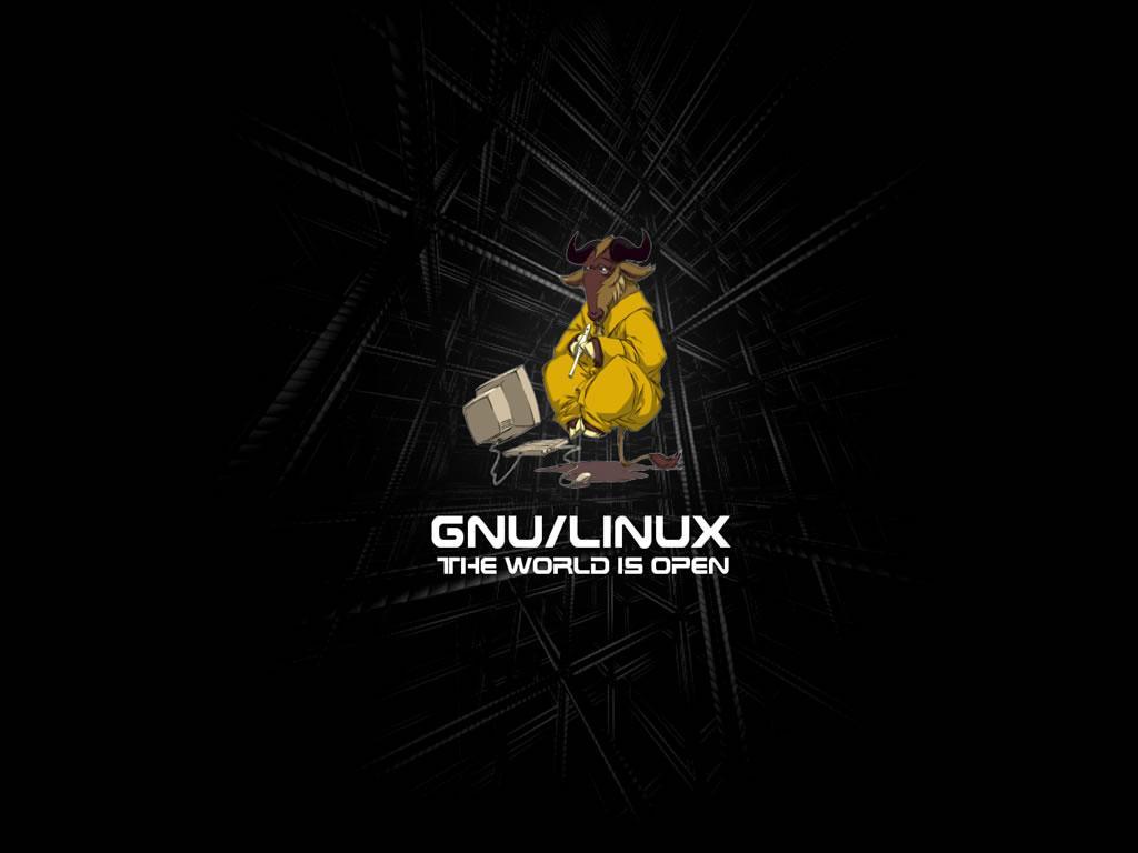 No, el escritorio de GNU/Linux no ha subido en popularidad