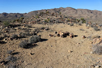 View north toward the summit of Negro Hill with Queen Mountain in the distance, Joshua Tree National Park