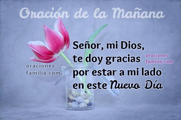 Oración diaria a Dios, frases cristianas con imágenes en cortas oraciones para iniciar el día entregando todo a Dios dando gracias, oración de la mañana por Mery Bracho.
