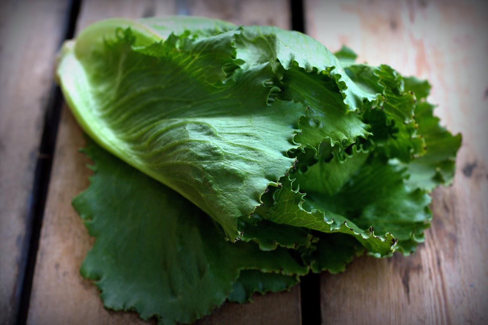 Salaatinlehti