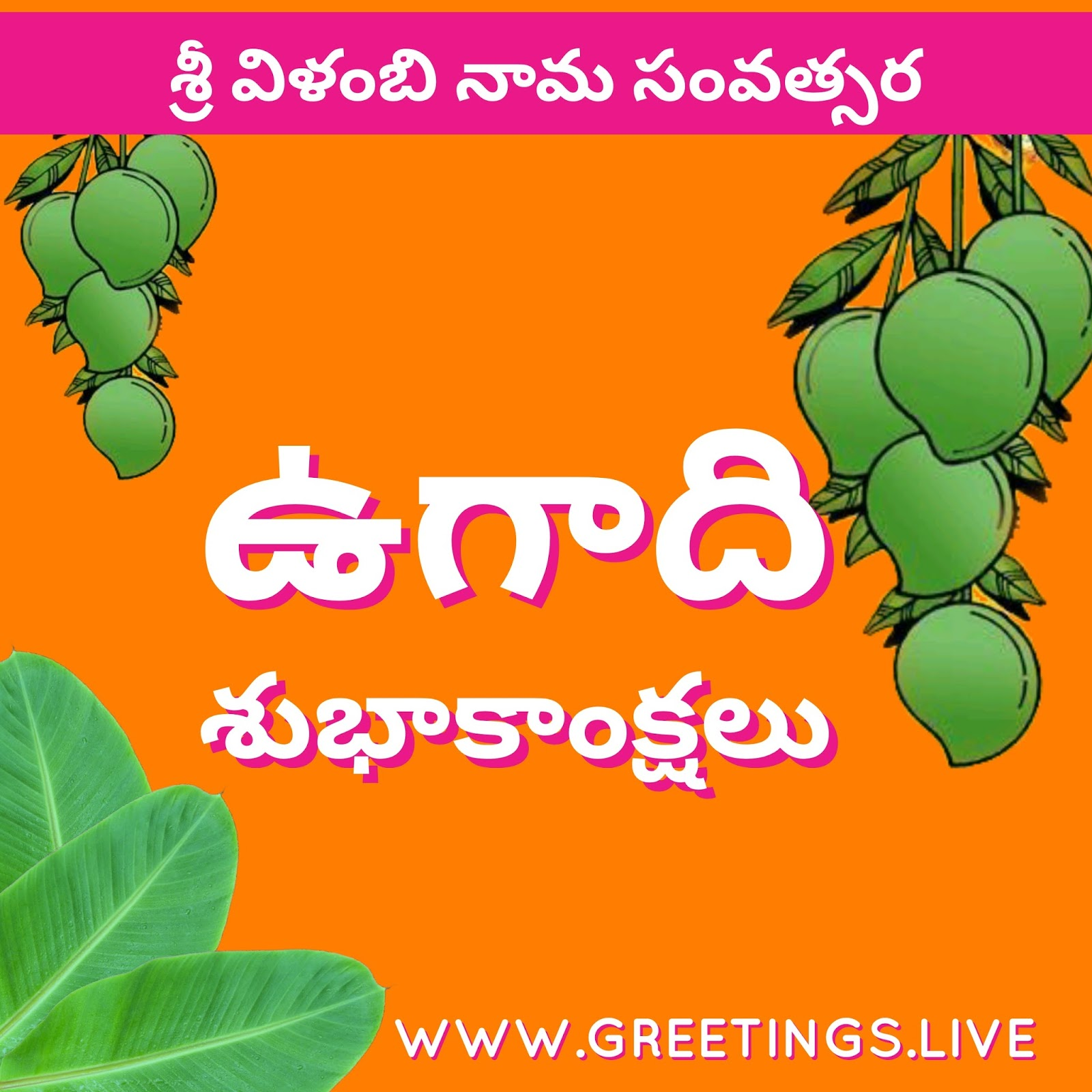 Greetingsve free hd images to express wishes all occasions telugu ugadi 2018 festival greetingslive hd image m4hsunfo Choice Image