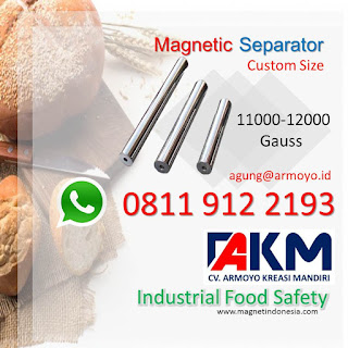 Magnet Industri for food safety
