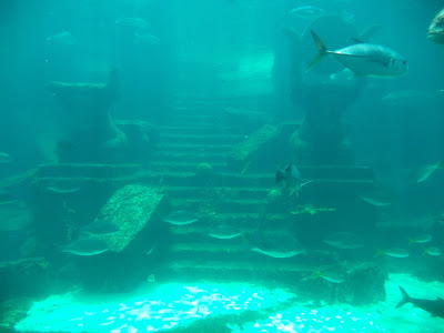 Atlantis Adventure Photo Diary