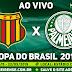 Ao Vivo Sampaio Corrêa x Palmeiras Copa do Brasil 22/05/2019