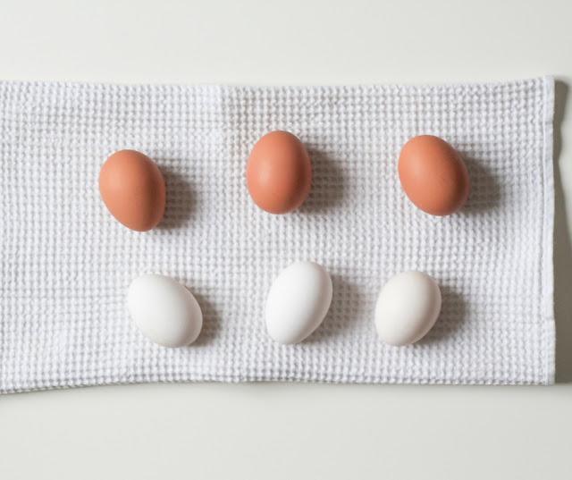 7+1 Τρόφιμα που δεν πρέπει ποτέ να μπαίνουν στην κατάψυξη - Edit Your Life Magazine