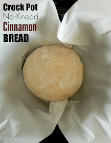 Crock Pot No-Knead Cinnamon Bread...yes, you can make bread in the slow cooker!  This bread is perfect for toast in the morning! (sweetandsavoryfood.com)