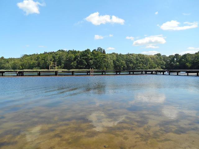 jezioro Linie, pomost, las, drzewa