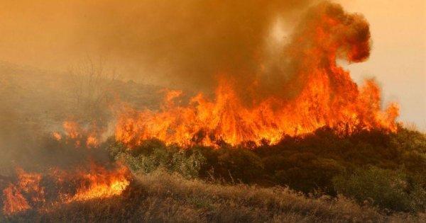 Φωτιά στη Ζάκυνθο - Νύχτα αγωνίας για τους κατοίκους χωριού (βίντεο)