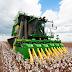 Εννέα προτάσεις της ΔΟΒ προς τους βαμβακοπαραγωγούς και τους εκκοκκιστές ενόψει της περιόδου συγκομιδής βαμβακιού