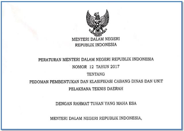 Peraturan Menteri Dalam Negeri nomor 12 tahun 2017 Tentang pembentukan UPTD Provinsi dan Kabupaten