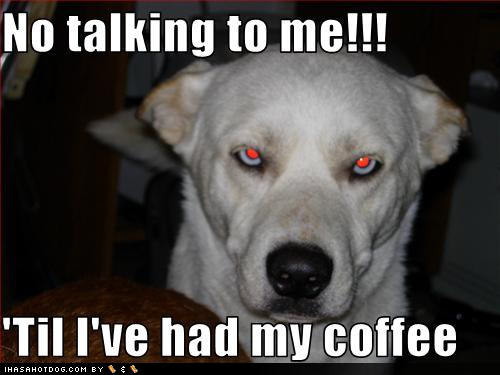 Funny wallpapers|HD wallpapers: funny talking dogs