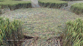 Crop Circles UK, Stonehenge, Wiltshire. Reported 8th July 2016.