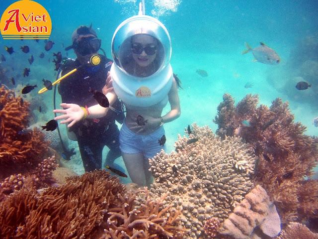 Tour Đi Bộ Dưới Biển kết hợp tour 4 đảo 03