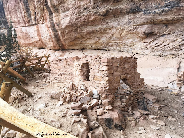 Exploring the Comb Ridge Canyons & Ruins, Cedar Mesa, Butler Wash, Double Stack Ruins