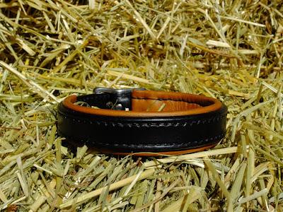 Collare per cani di piccola taglia in cuoio nero con imbottitura in pelle chiara e fibbia in acciaio inox