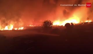 Un taller ilegal origen el incendio de la Cañada Real que calcinó 12 hectáras