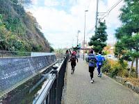 今井川沿いを走るランナー