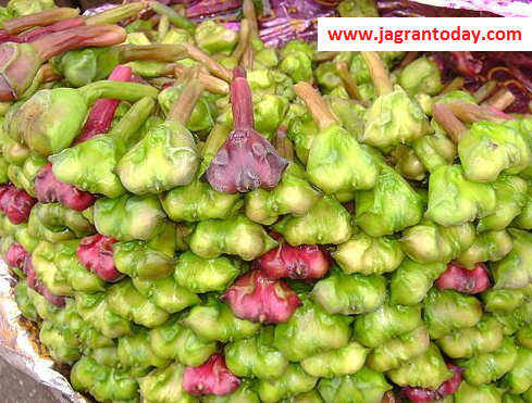 Water Chestnut is a Gift for Health