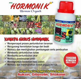 agen hormonik nasa jogja