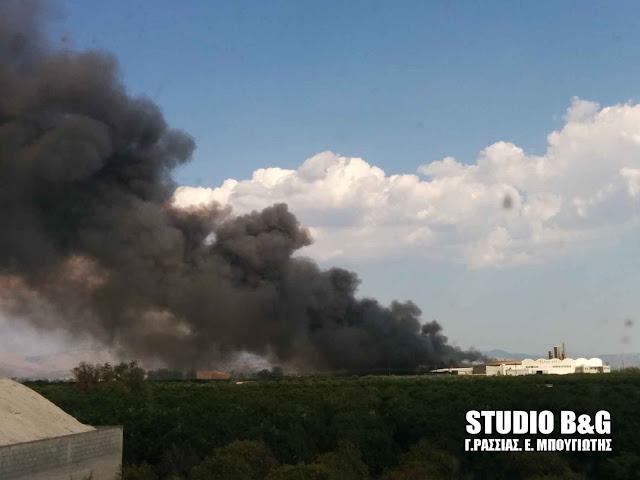 """ΚΚΕ Αργολίδας για την πυρκαγιά στις """"Εσπερίδες"""": Από την πυρκαγιά μπήκαν άμεσα σε κίνδυνο οι ζωές των εργαζόμενων της βάρδιας"""