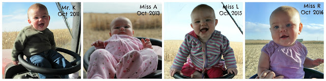 Having fun in the tractor with Mom - first harvest photos