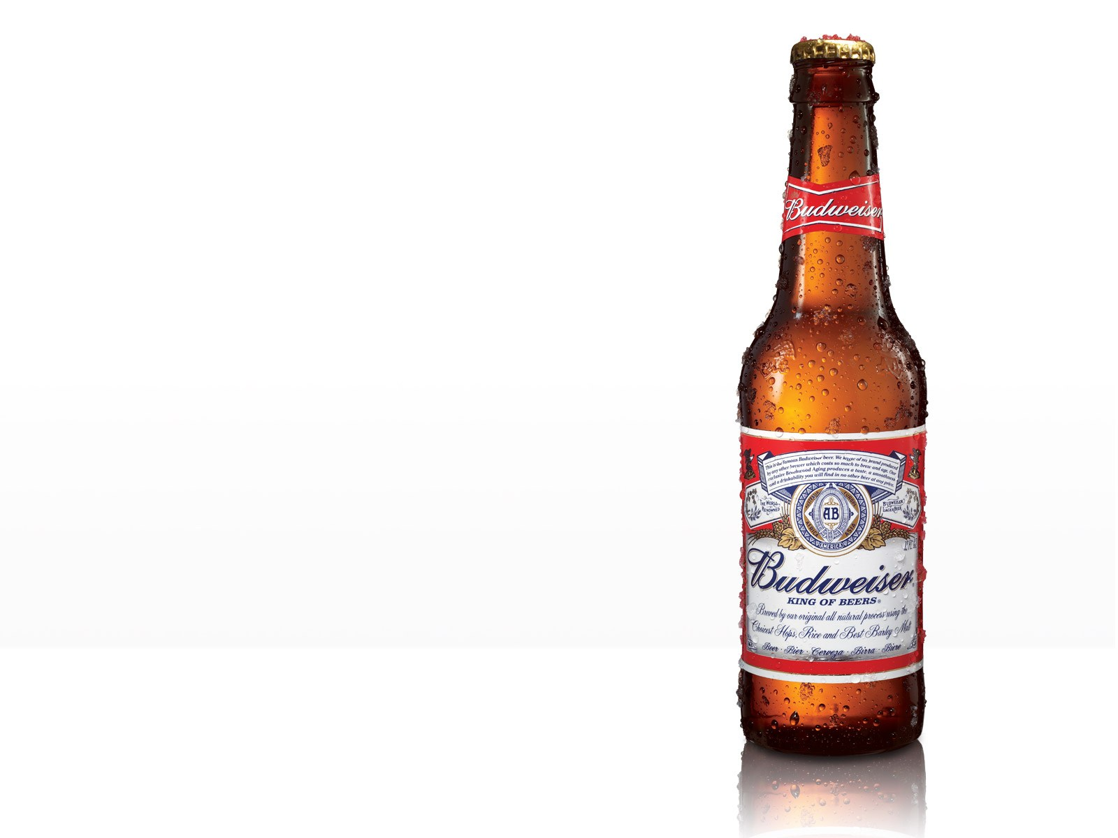 Pictures Blog: Budweiser Light Bottle