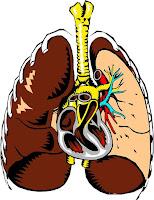 gejala penyakit paru paru cara mengobati mencegah penularan penyakit infeksi paru paru
