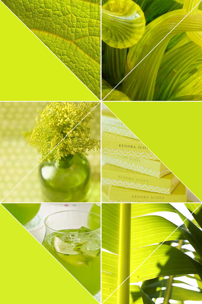 Color inspiration yellow, green, chartreuse, gold lime, photography, nature, flowers, leaves, drinks, glass, moldboard, collage
