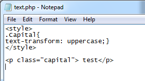 Make Capital Letter In Css
