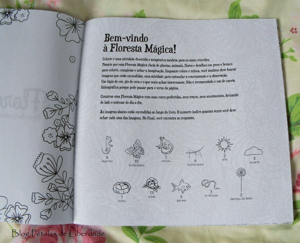 Resenha, livro de colorir, Floresta-Mágica