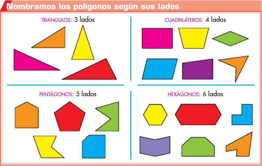 http://www.primerodecarlos.com/TERCERO_PRIMARIA/mayo/Unidad11/mates/actividades/poligonos_segun_lados/visor.swf