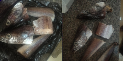 Photos: Nigerian man claims he bought a fake fish