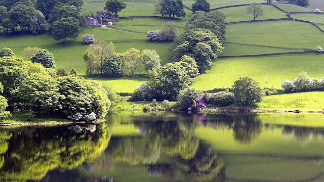 peace of mind wallpapers placid lake green meadow