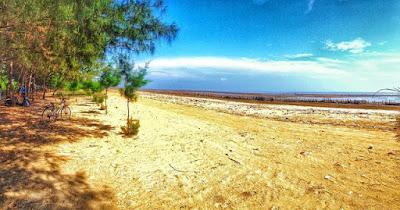 Pantai Cemara Tuban
