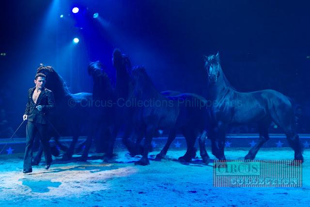 Maycol danse avec les chevaux