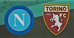 مشاهدة مباراة نابولي وتورينو بث مباشر 17-2-2019 الدوري الايطالي