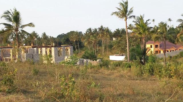 Image result for kiwanja kinauzwa