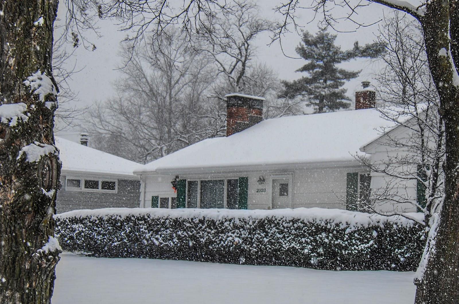 Bailey S Buddy Neighborhood Snow Scenes Thursday Morning