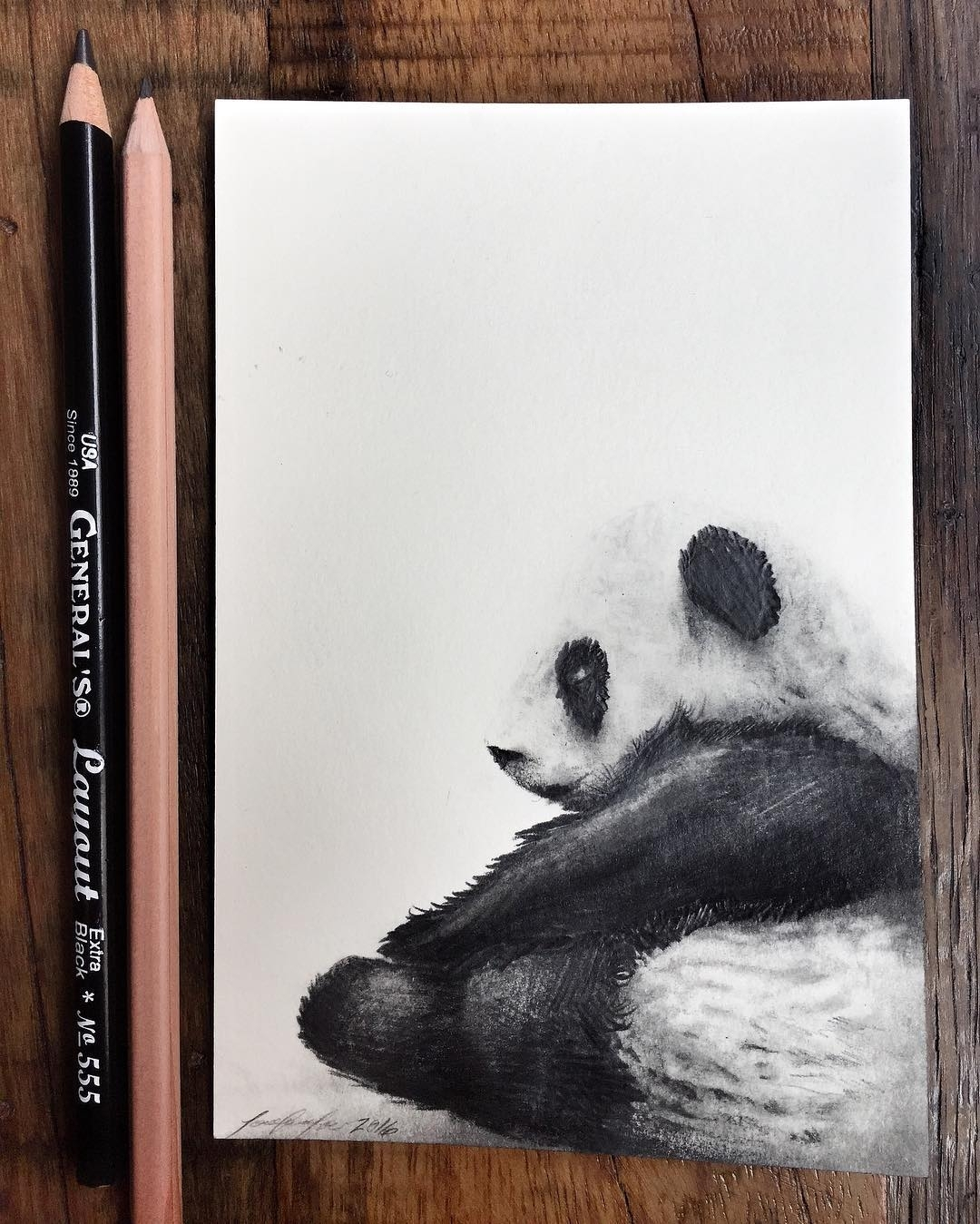 13-Panda-Jonathan-Martinez-Art-of-the-Endangered-Paintings-and-Drawings-www-designstack-co