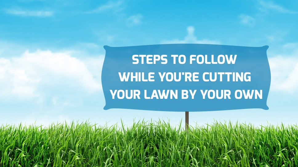 Pros and Cons of Electric & Gas Lawn Mower